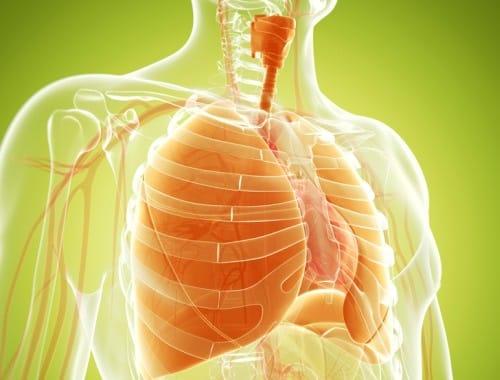 Remedios caseros para limpiarte los pulmones de forma increible ...